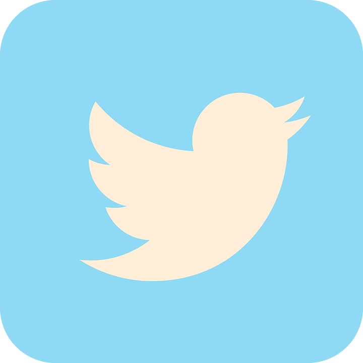 twitter_icono
